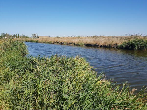Канал в Аджиголе